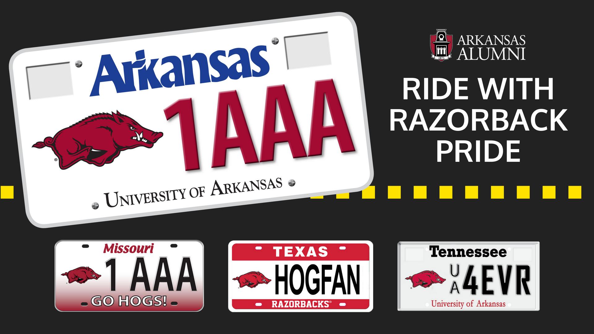 Arkansas Alumni Online Community - Arkansas Alumni Hog Tags